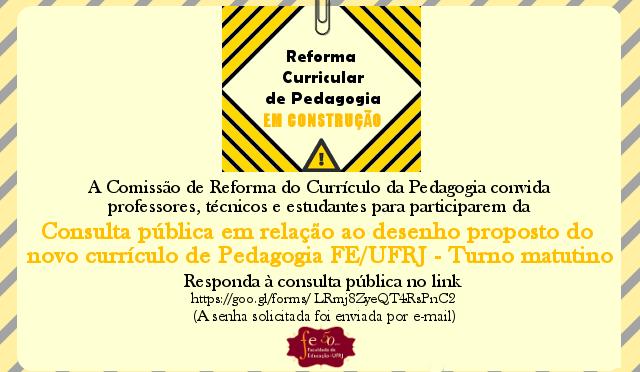 Consulta pública em relação ao desenho proposto do novo currículo de Pedagogia FE/UFRJ – Turno matutino