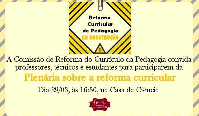 Plenária sobre a reforma curricular